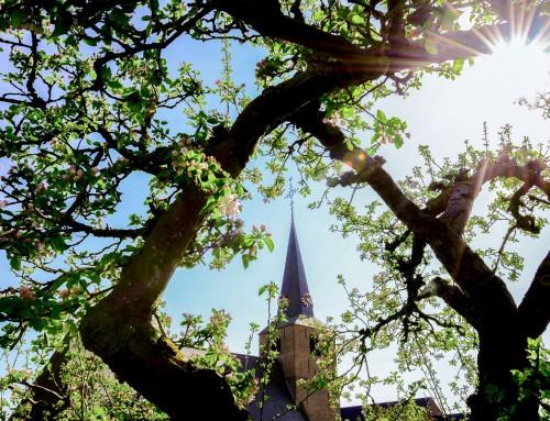 Restauratie NH Kerk te Wijk en Aalburg